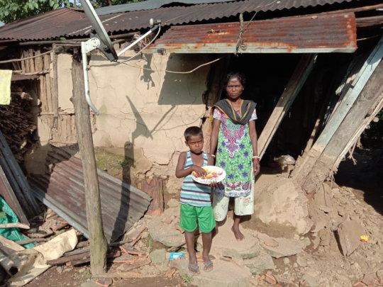 House damaged by elephants