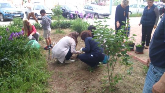 Let's make Plovdiv blossom initiative
