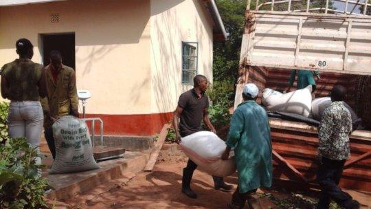 DNRC staff loading moringa seeds
