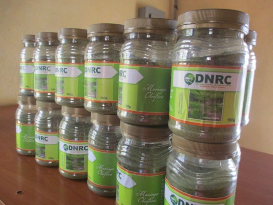 Moringa powder packaged for sale