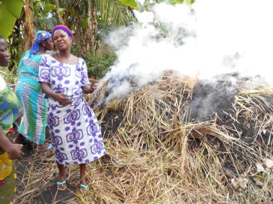 Women at work in Benin