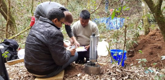 Examining forest-water interactions
