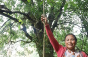 Grow 30,000 trees to restore India's cloud forest