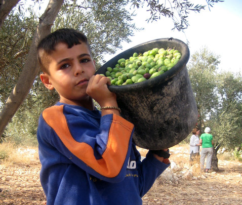 Entrepreneurs for Fair Trade Benefit Whole World