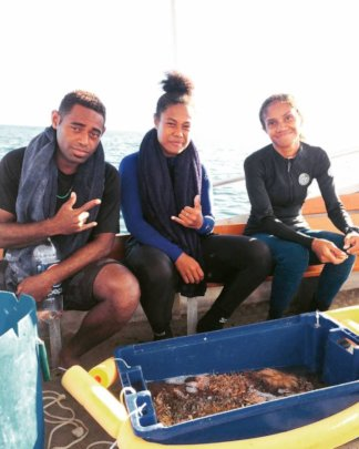 Coral Gardening Team Removing Coral-Killing COTS