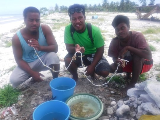 Making coral fragment leis for out-planting