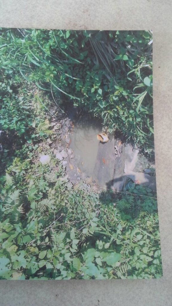 Unsafe pond where people collected drinking water