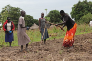 Mary planting maize together with her children