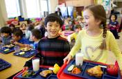 Ingredients for Healthy School Kids