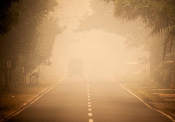 Kalimantan Haze Emergency Appeal