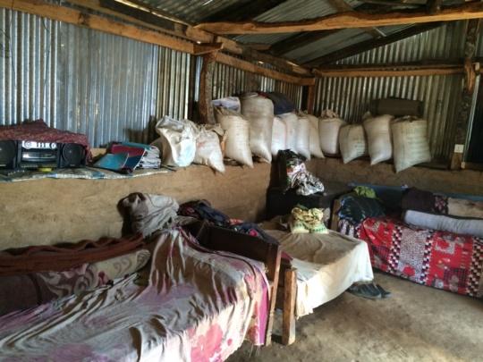 'Temporary shelter', opposite wall