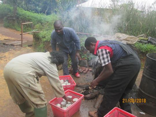 Local pasteurisation process