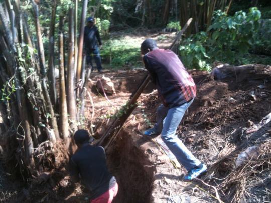 Volunteers Romaric and Divine fighting the stump