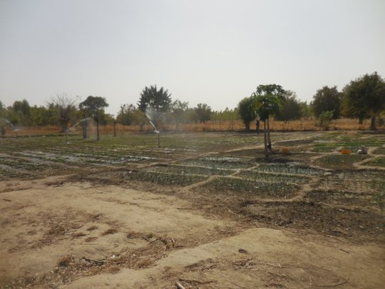 Small scale sprinkler irrigation system by solar