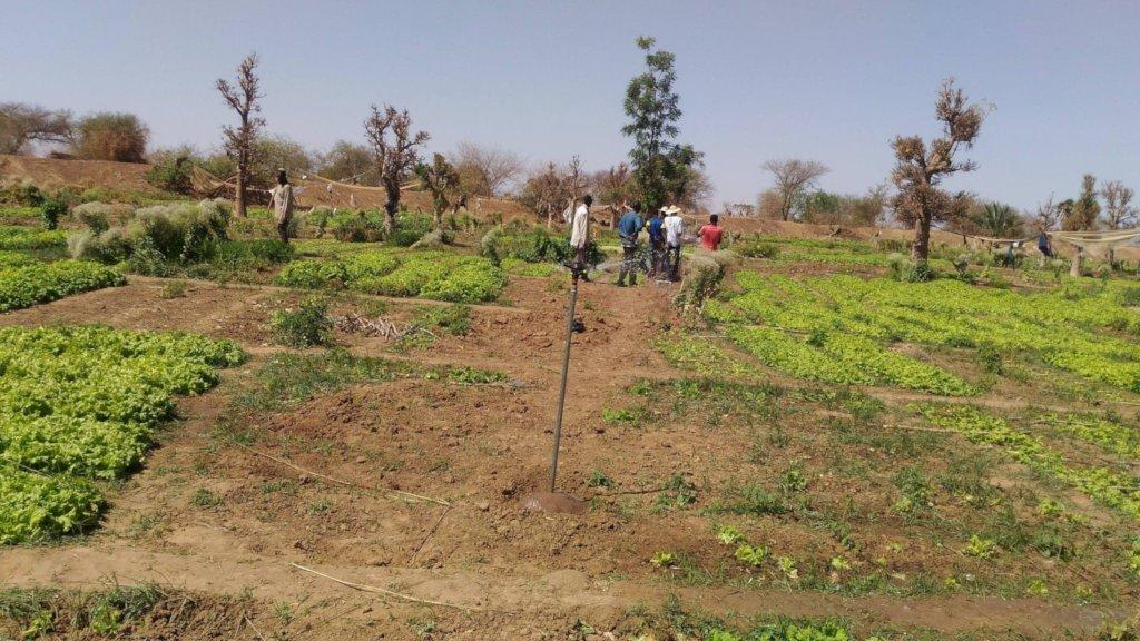 Solar power sprinkler irrigation system, Djomga