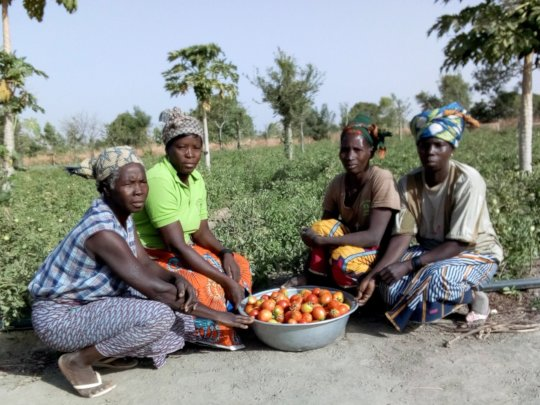 Women farmers in the village of Kamsi