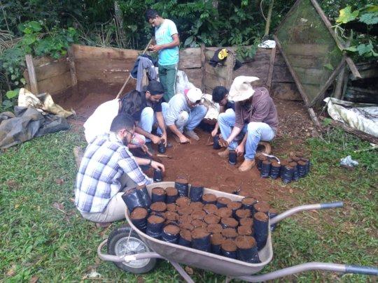 Limeira Volunteers