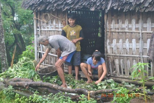 Ketut after school, preparing to feed their cows