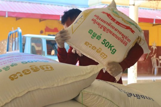 Preparing food supplies to deliver to families