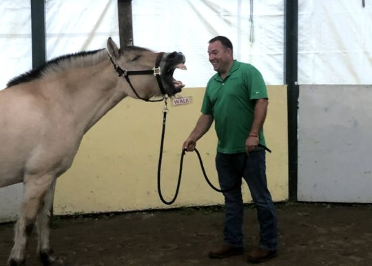 ? Drill Sargent Hagar the therapy horse with John