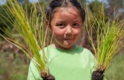 Help Us Plant 10,000 Longleaf Pine Trees in 2017