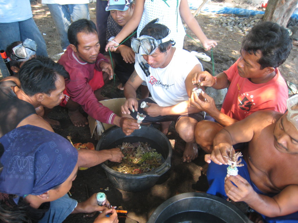 Help communities through sustainable aquaculture