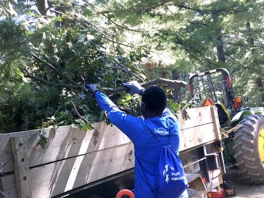Trail Maintenace & Invasive Species Removal.