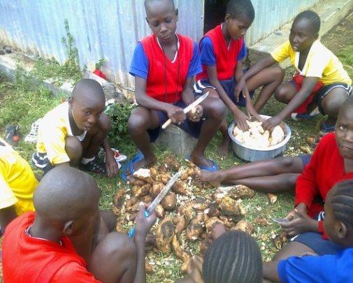 Girls preparing potatoes they grew at the school