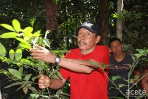 Lucho in Healing Forest in Remoyacu