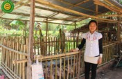Provide 5 Microfinance Loans for Cambodians
