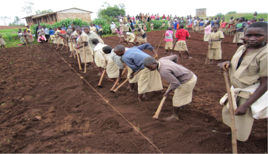 Youth preparing the soil to plant a new garden