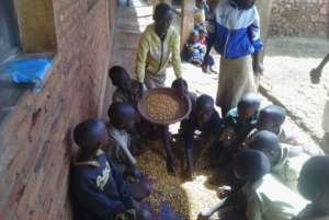 Students sifting beans from garden