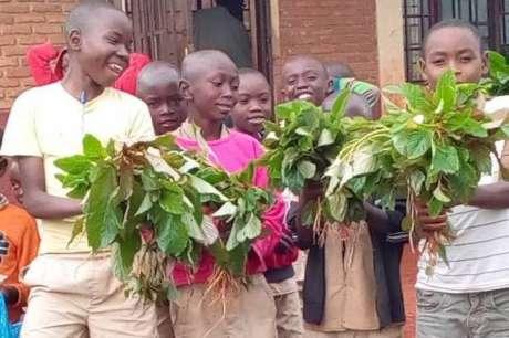 Build School Gardens for 1000 Youth in Burundi