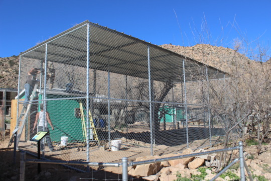 New Habitat- Nearing Completion