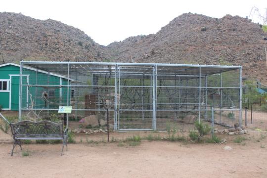 Macaque Enclosure