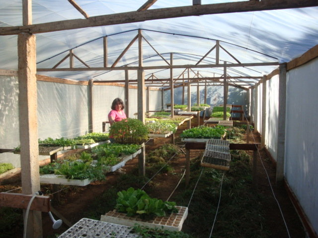 Denise and new greenhouse