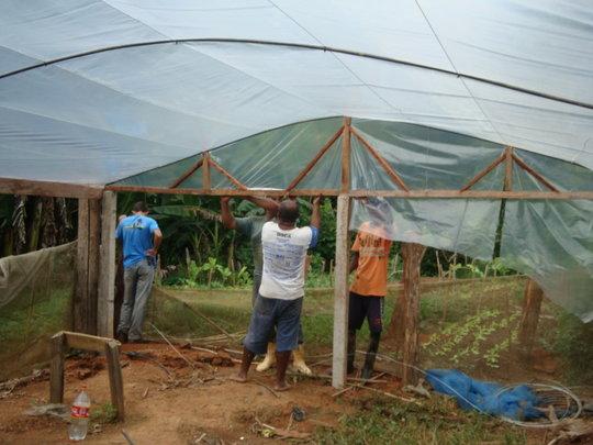 Greenhouse construction 2