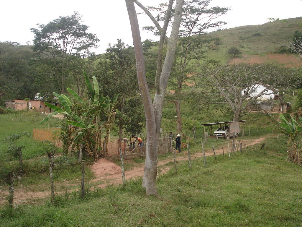 Piece of land occupied by future organic producers