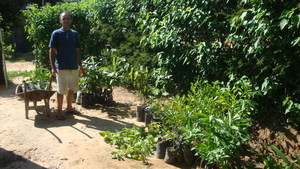 Preparing to load the saplings.