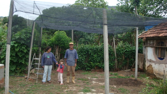 The tree nursery is ready and with plenty of room.
