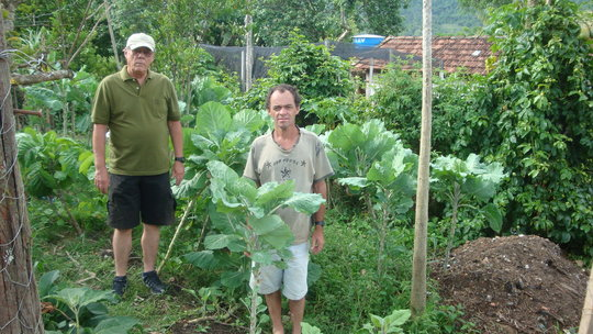 We are now working to improve this home garden.
