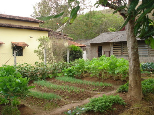 Another view of the garden