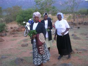 Propagation of herbs has many benefits in rural Africa