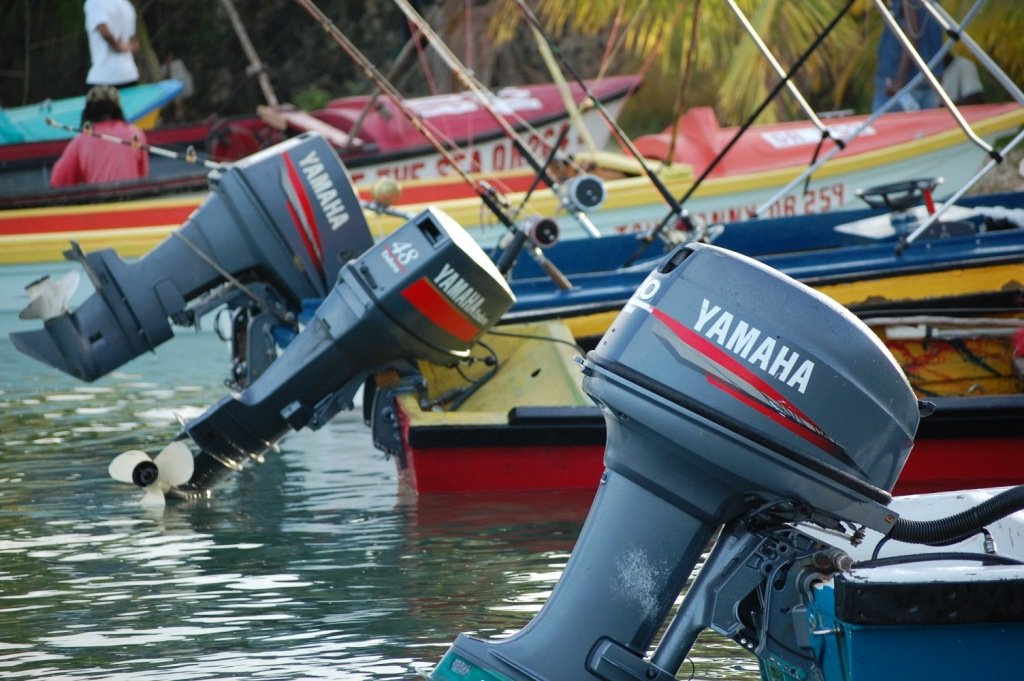 Snorkeling Shop for Oracabessa Bay Fish Sanctuary