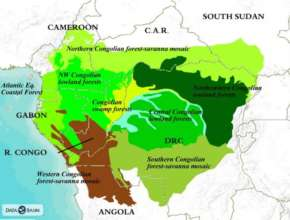 Map of the Congo Basin