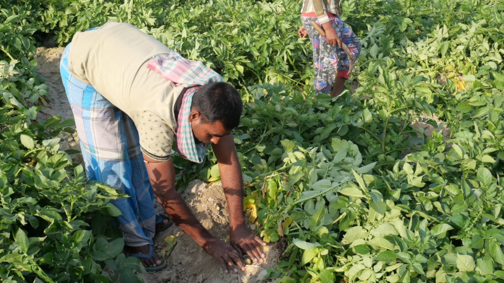 AMS farmer in West Bengal