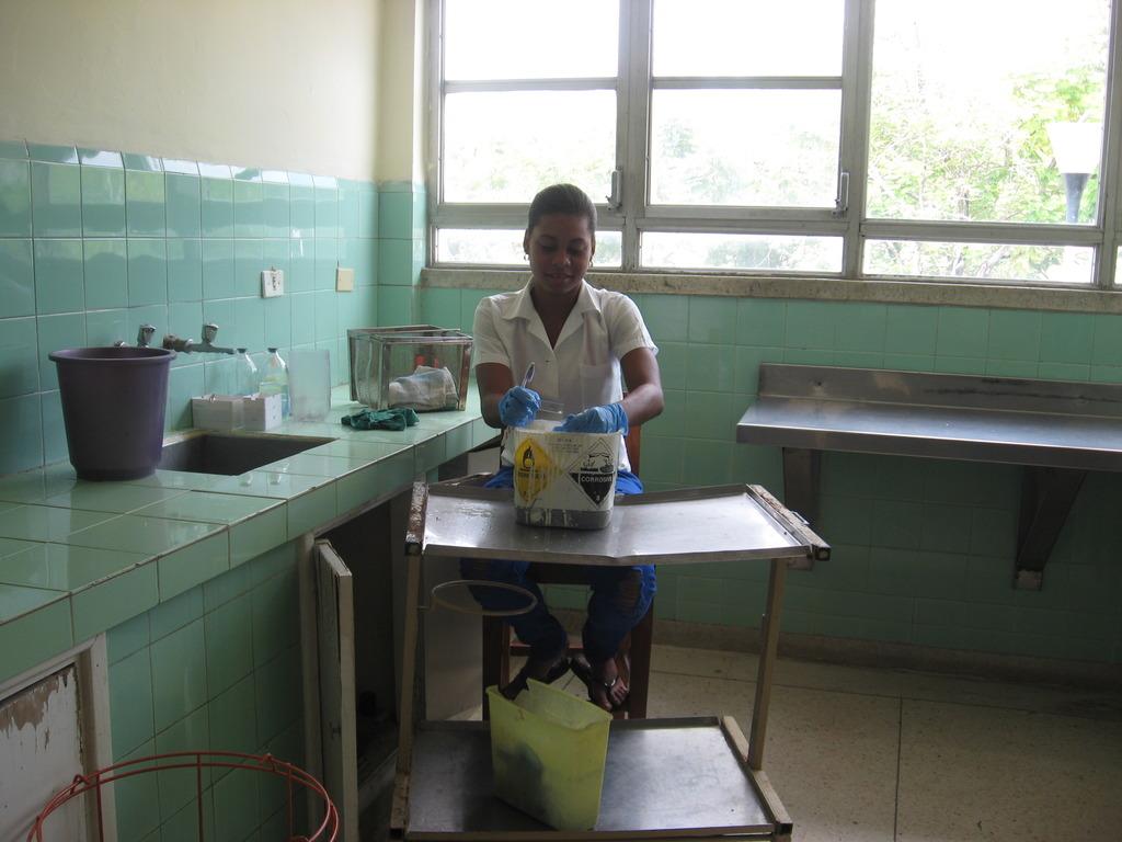 Washing microscope slides in Global Links gloves