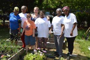 Rosie's Place Garden Committee
