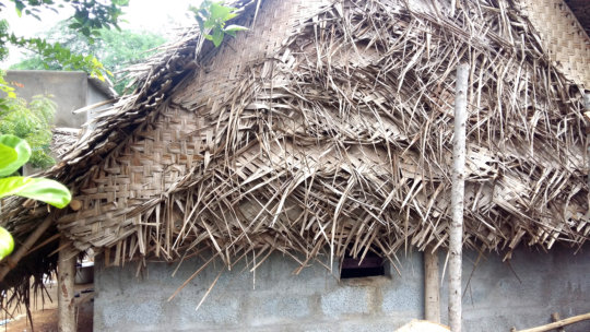 Thatched leaves housing done by us