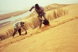 Malian Landscape
